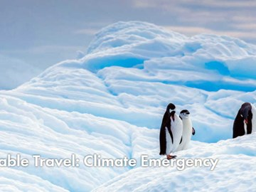Travel and tourism organizations push for action on climate emergency