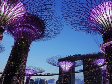 How Singapore Tourism Board is working on a post-coronavirus strategy