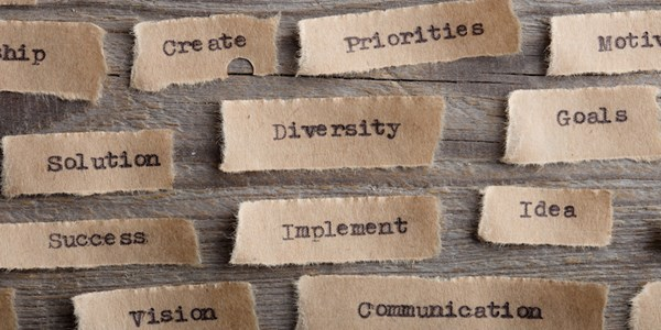 diversity-inclusion-sounding-off