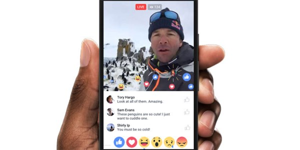 Live, 360, or virtual video: Facebook's new video formats catch marketers' eyes