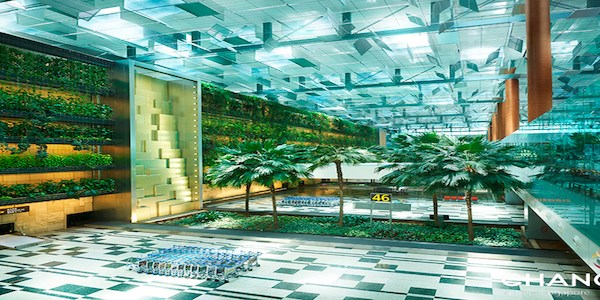 Changi Airport investing $50 million in incubator programme