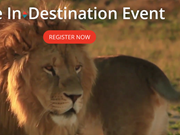 tnoozLIVE@Arival: the In-Destination Event